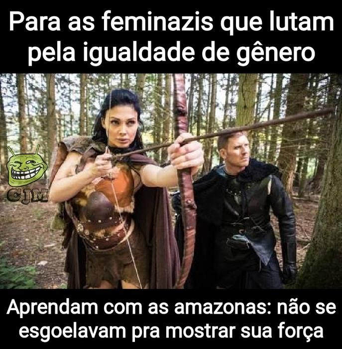 Feminazis bosta, amazonas foda - meme