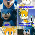 Sanic Movie Sncker
