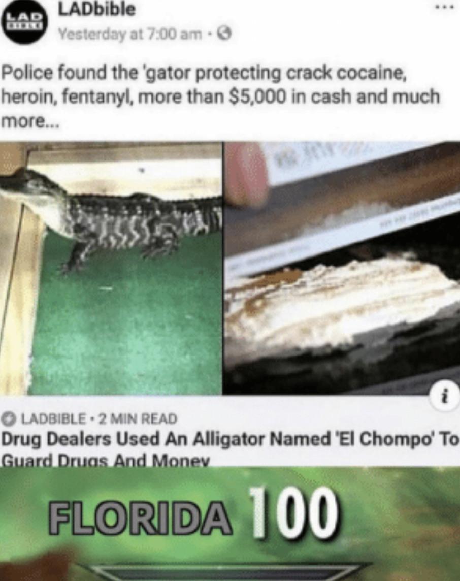 Let's go Florida! - meme