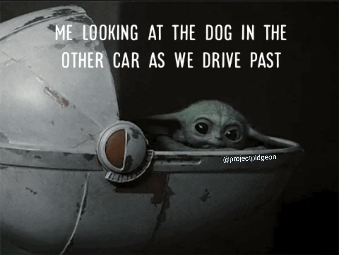 Baby yoda is adorable - meme