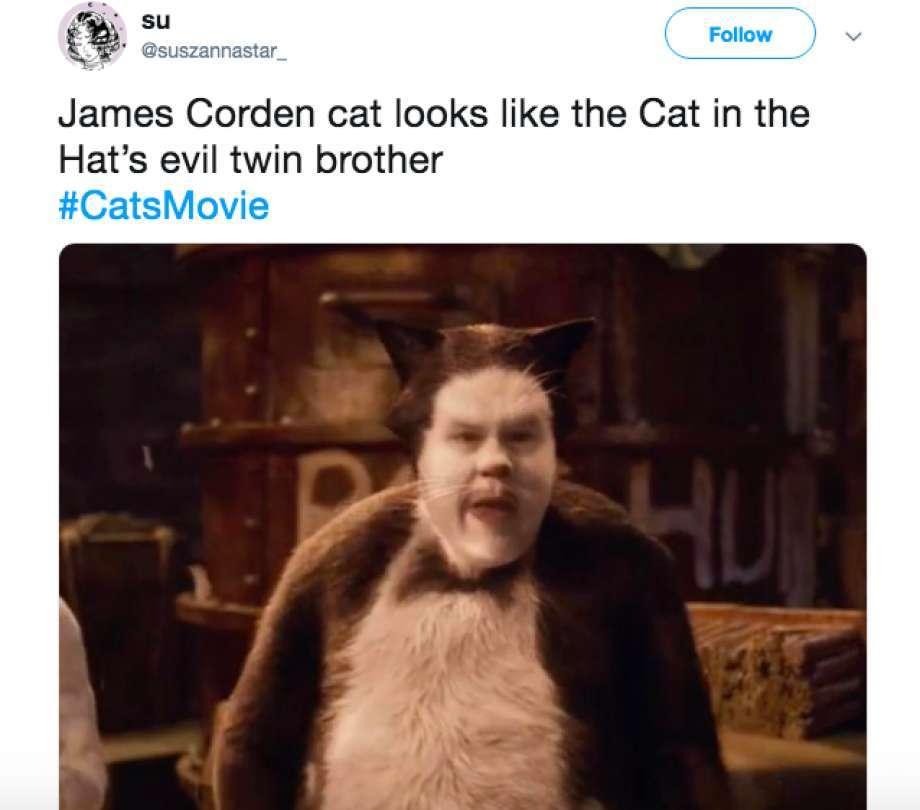 Cats - meme