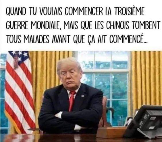 Donald Trump - meme