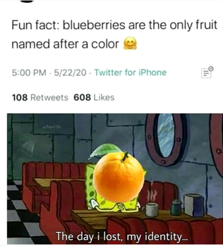 Fun fact - meme