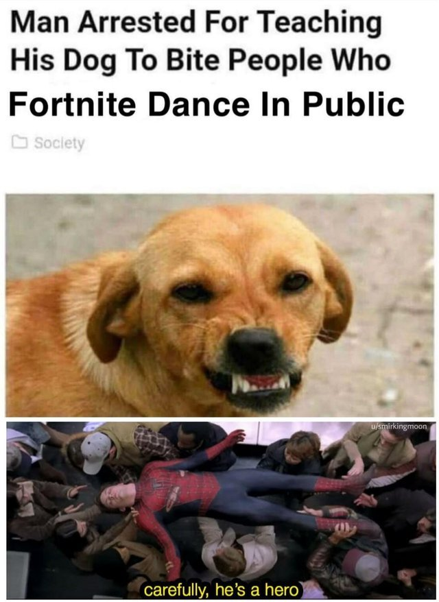 Man arrested for teaching his dog to bite people who fortnite dance in public - meme