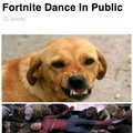 Man arrested for teaching his dog to bite people who fortnite dance in public