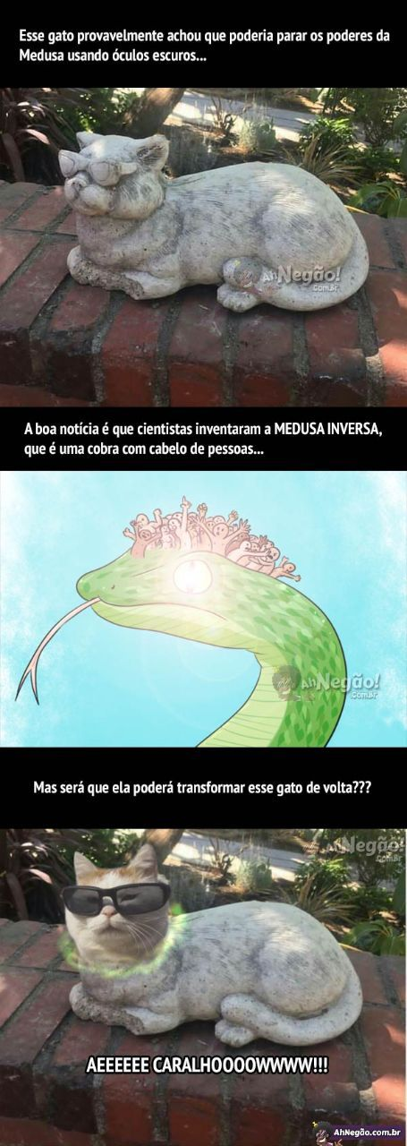 medusa inversa - meme