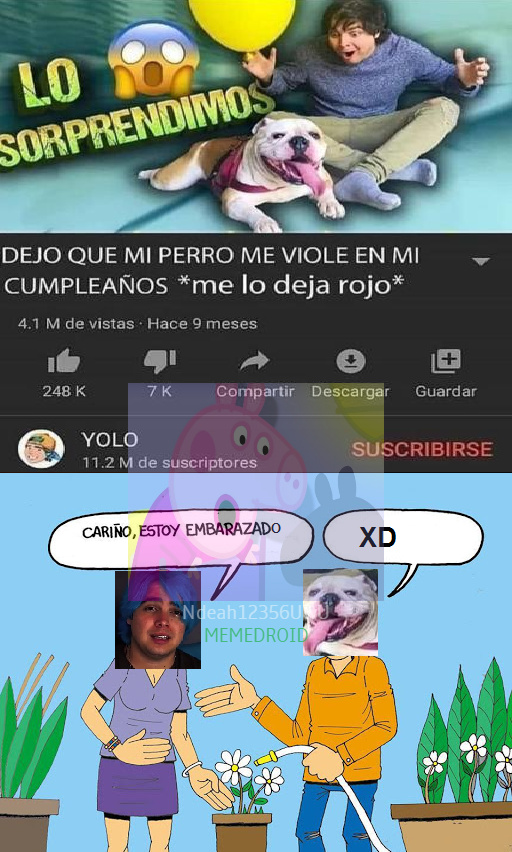 Oso de peluche: NIGGA WHAT THE F###!!?? - No miren mi nombre :c - meme
