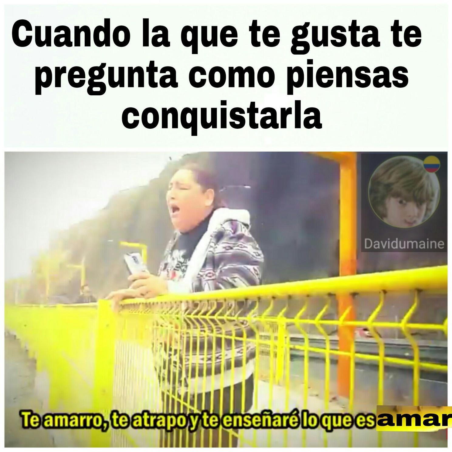 Amar - meme