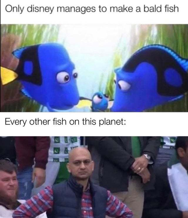 Only Disney manages to make a bald fish - meme