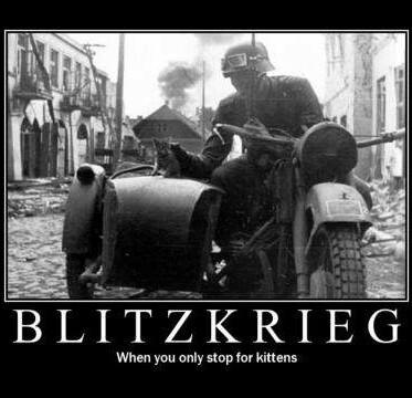 Blitz Kitten - meme