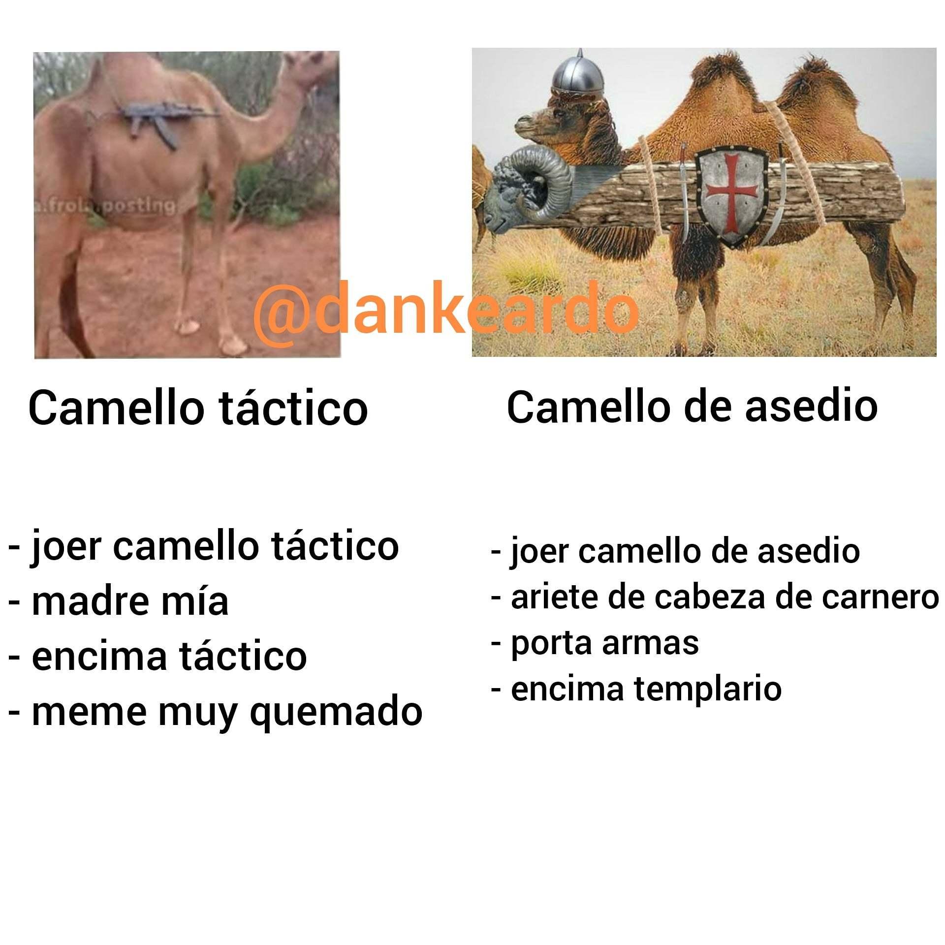 Encima templario - meme