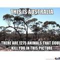 Australia be like
