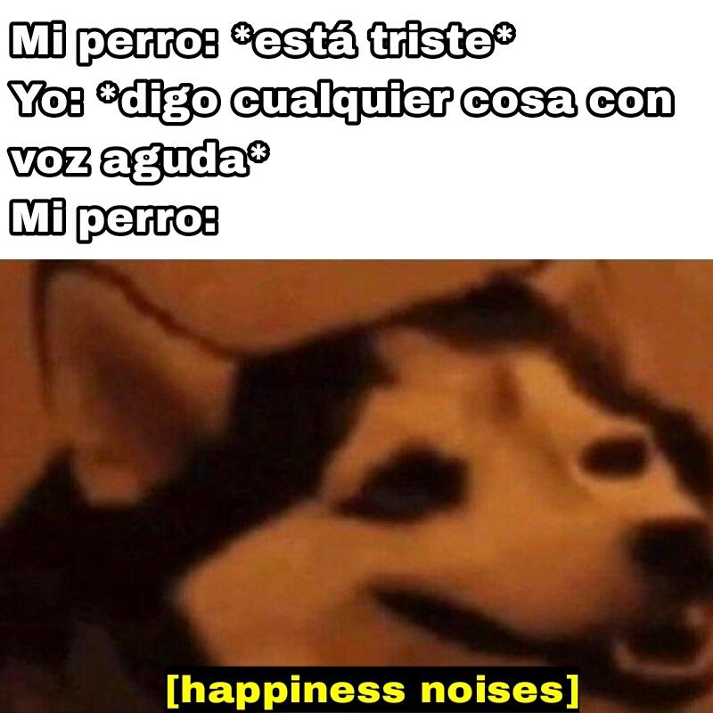Todos los perros se alegran si les hablas con voz aguda - meme