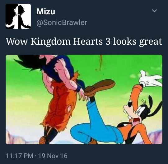 NEW LEAKED Kingdom Hearts III image - meme