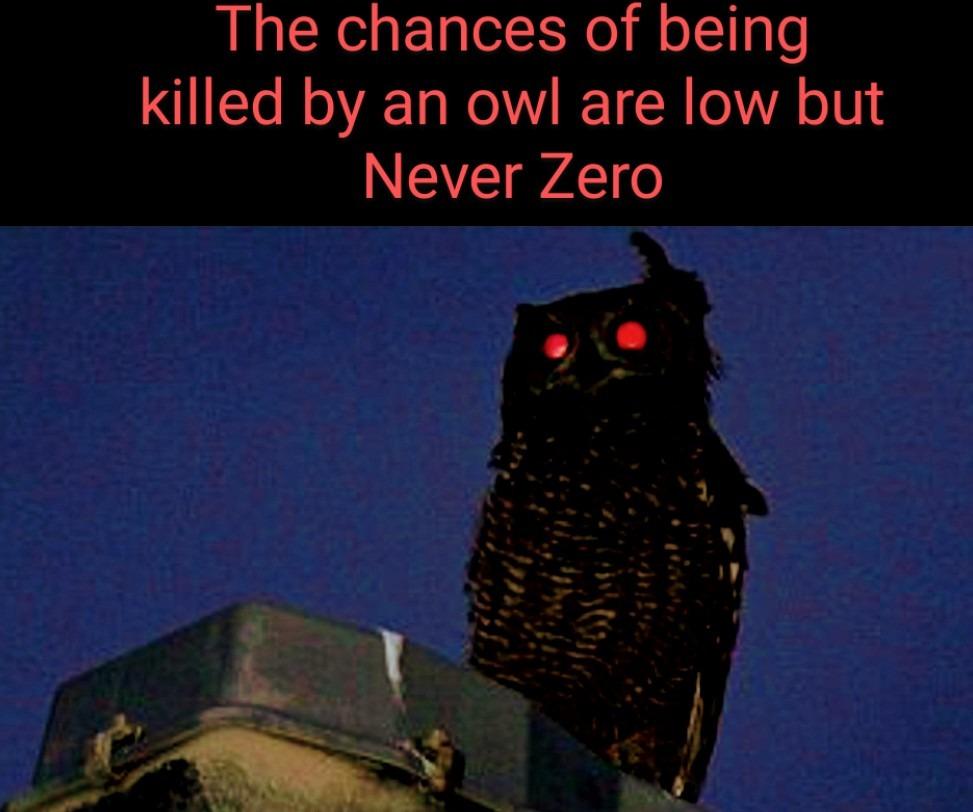 Evil Owl... - meme