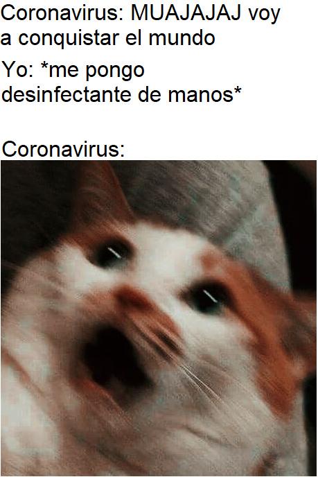 JAJA c mamo - meme