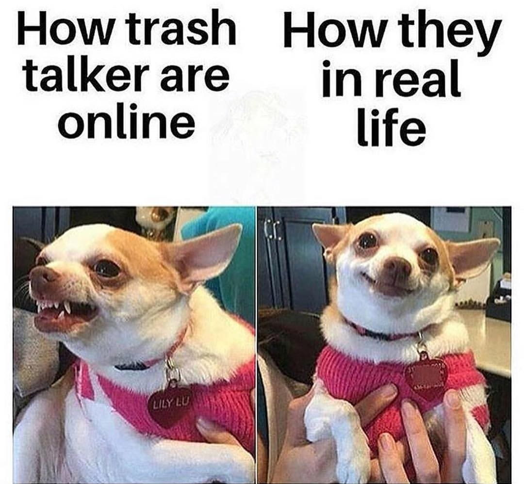 Exatamente - meme