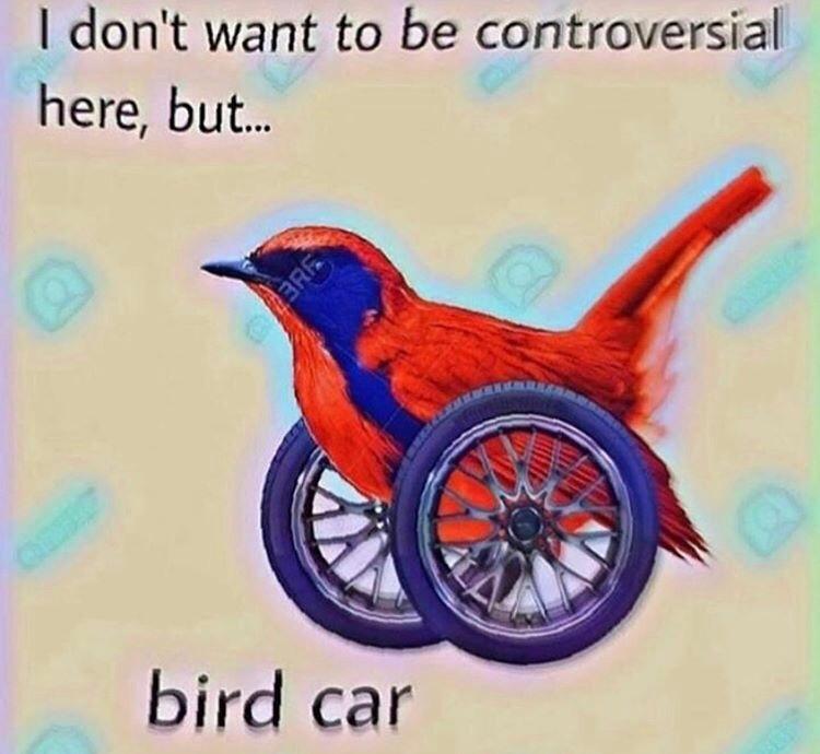 bird car - meme