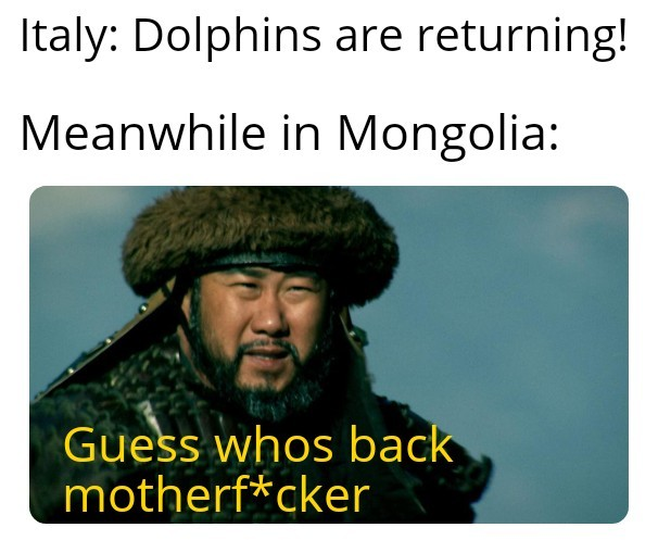 Who has returned to Mongolia? - meme