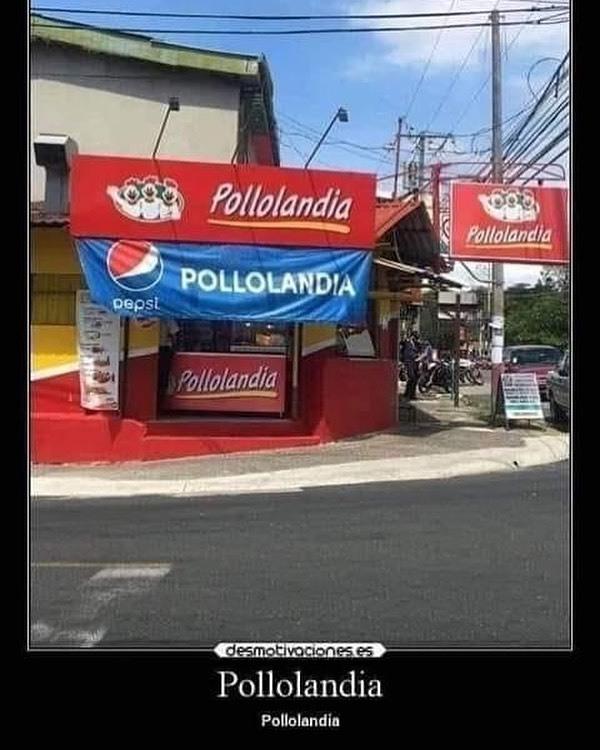 Pollolandia - meme