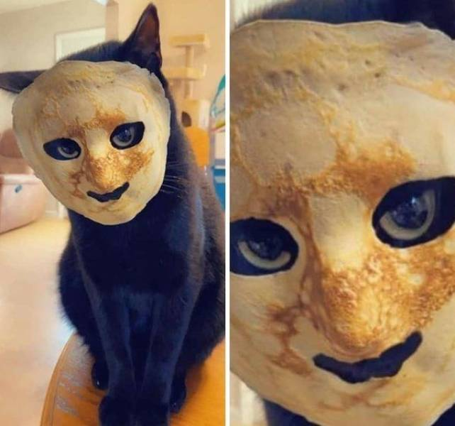 No one cared who I was until I put on the mask. - meme