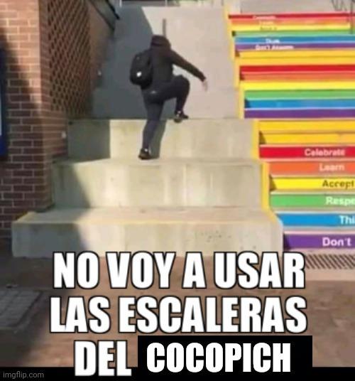 Cocopich - meme