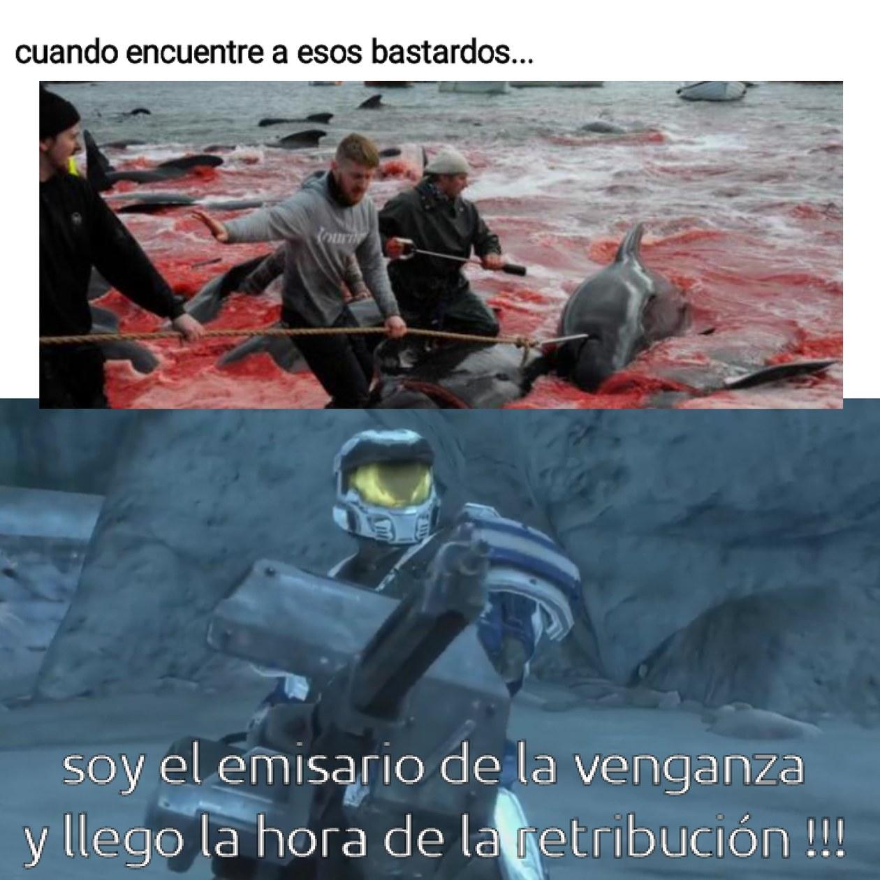 Contexto : mataron 250 delfines(entre ellos crias), era su rito de iniciación para demostrar que son adultos. .. - meme