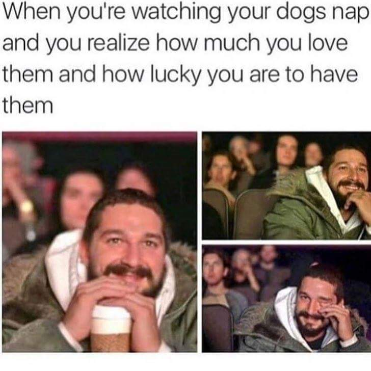 Me everyday - meme
