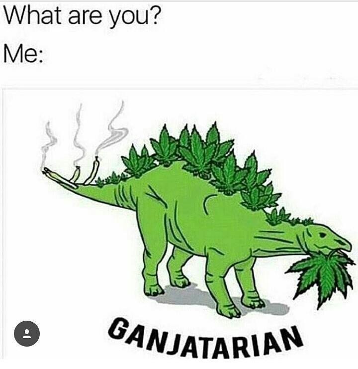 Ganja boi - meme