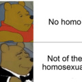 Never forget to say no homo