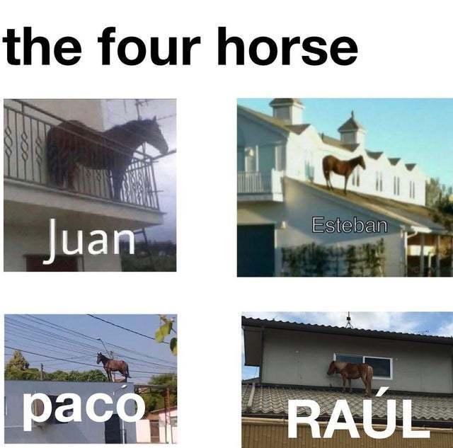 The four horses - meme