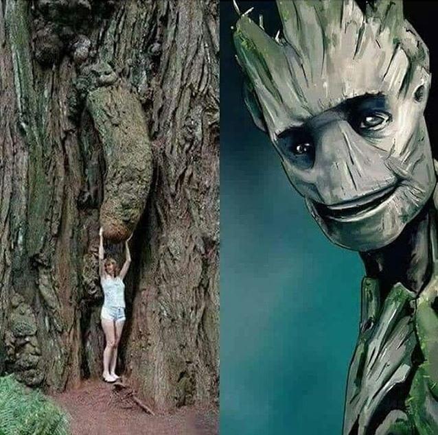 eae Groot - meme