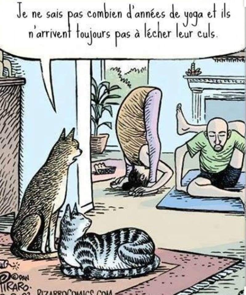 Картинках раньше, смешные картинки про йогу мемы