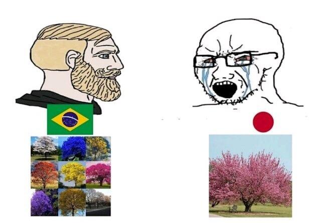 Brasil CHAD - meme