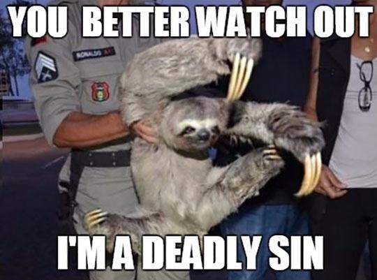 sloth - meme