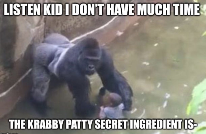 who is the monkey? - meme