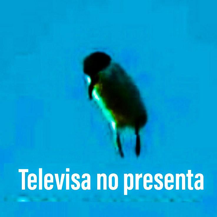 Televisa no presenta - meme