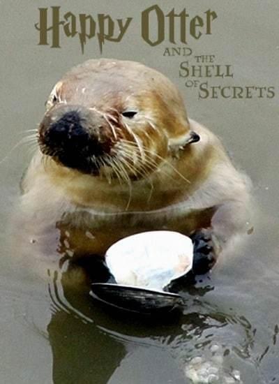 Happy Otter II - meme