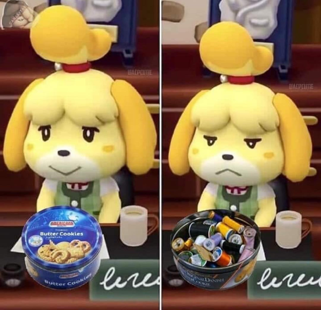 I feel you isabelle :( - meme