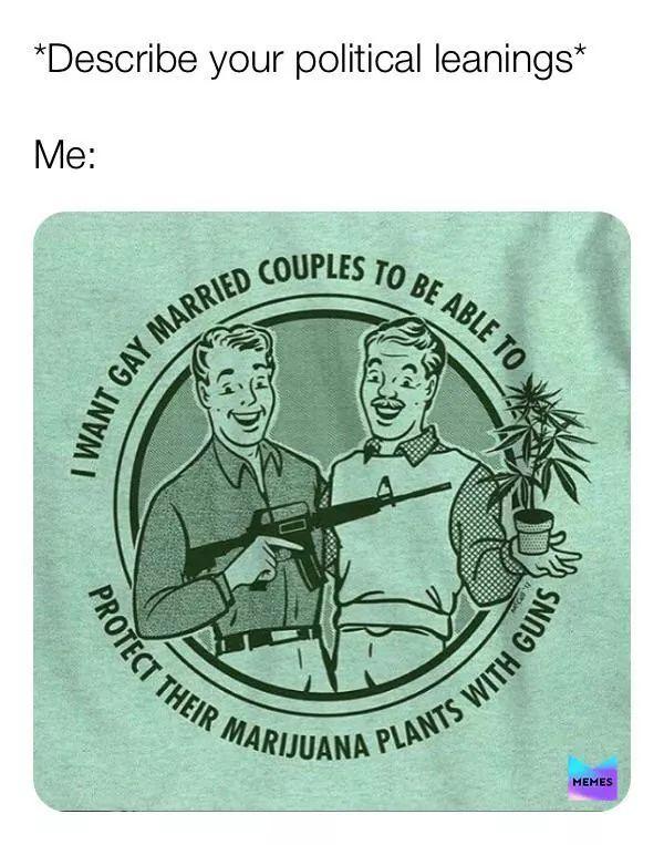 Hmmmm idc I just want me guns and the green plants thingy - meme