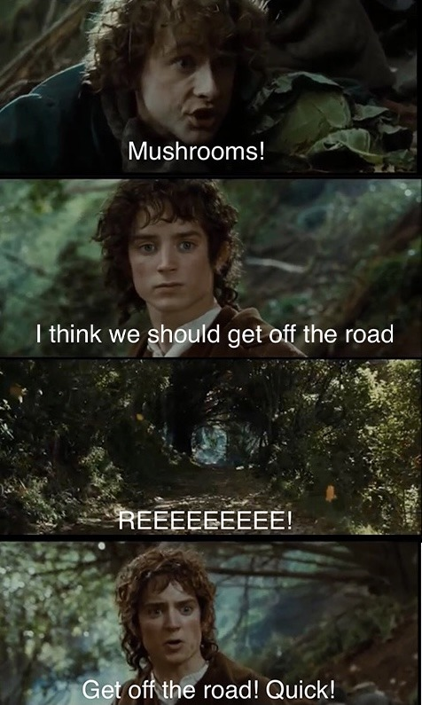 When Frodo did a little too many mushrooms - meme
