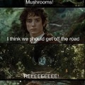 When Frodo did a little too many mushrooms