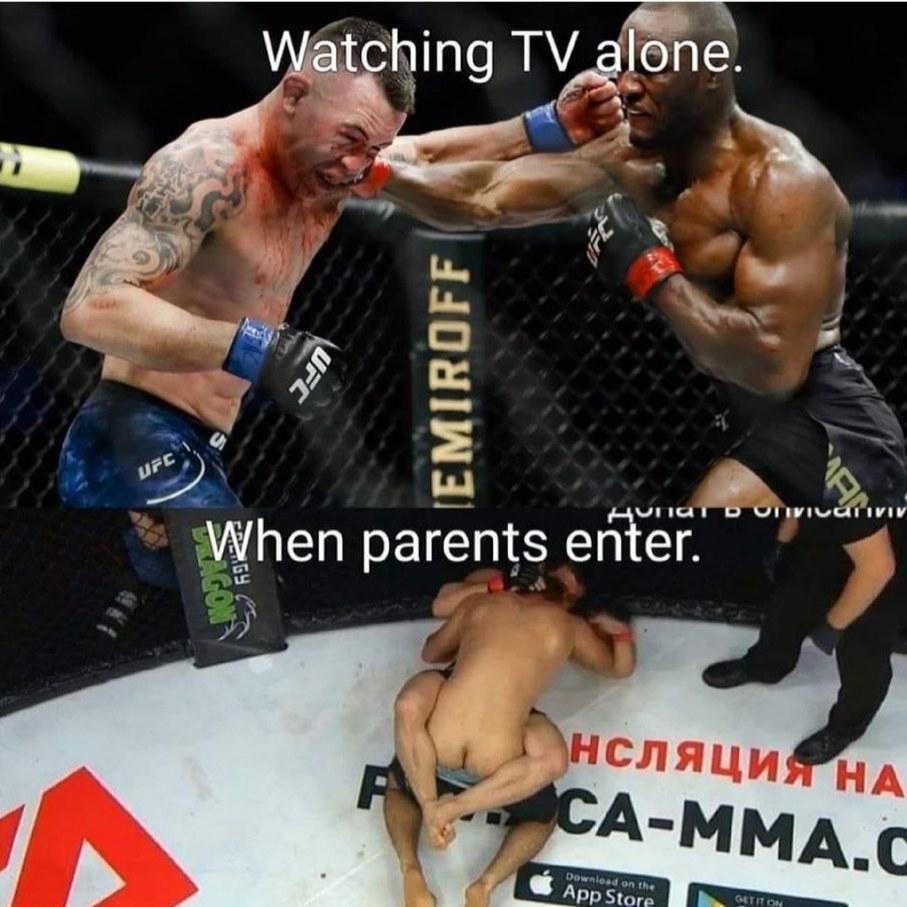 """Fight"" - meme"