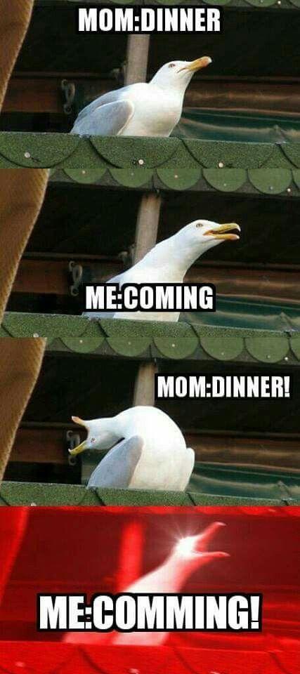Moms... am I right? - meme