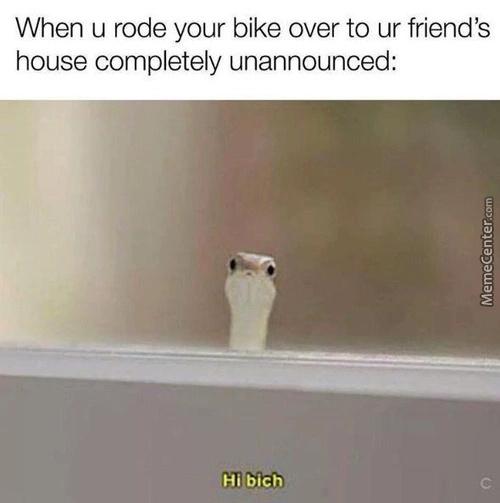 Hahaha true - meme