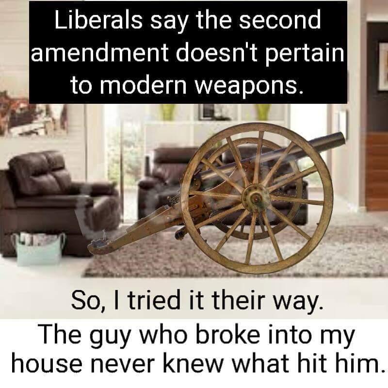 it's a cannon - meme