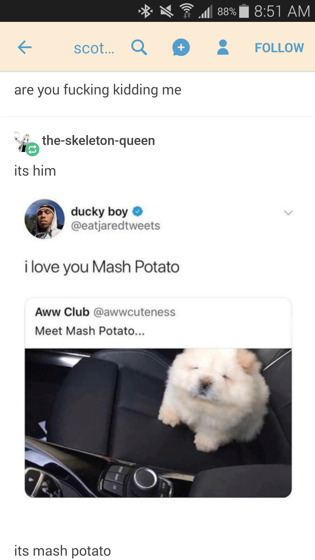 Mush potato are yummy. - meme