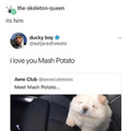 Mush potato are yummy.
