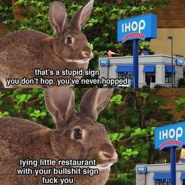 Bunny ain't having none of your bullshit today, IHOP - meme