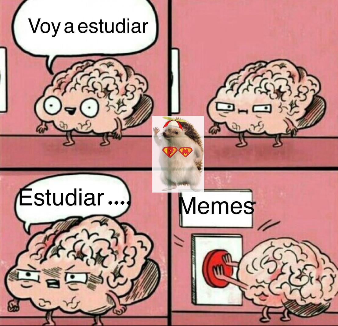 MACARRONEH - meme